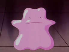 Duplica's Ditto.png
