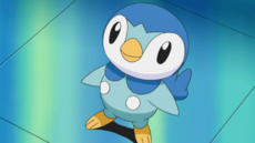 Dawn's Piplup.png