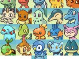 The Partner (Pokémon Mystery Dungeon: Explorers of Time, Darkness and Sky)