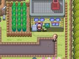 Guía Pokémon Iberia (segunda versión)