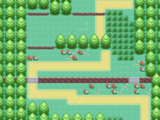 Route 1