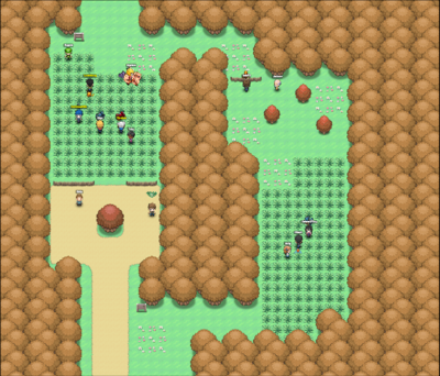 Route 37.png