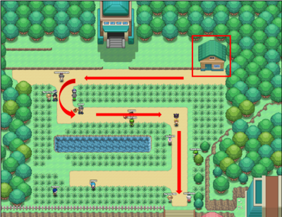 Route 5 final.png