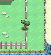 HM cut tree