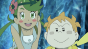 Mallow and Sophocles