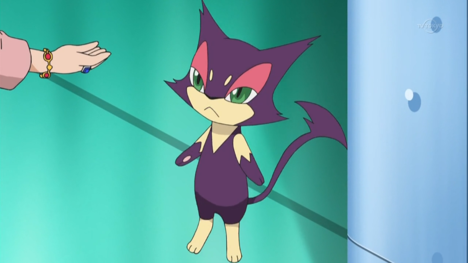 Mrs. Ripple had a Purrloin, who wandered around the Decolore Queen and found out the real criminal.