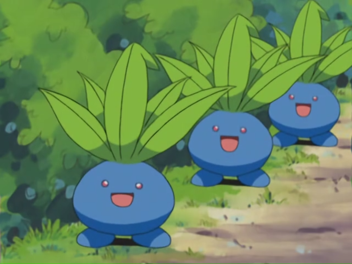 Eliza's Oddish are one of the Pokémon Eliza extracts the fragrances from.