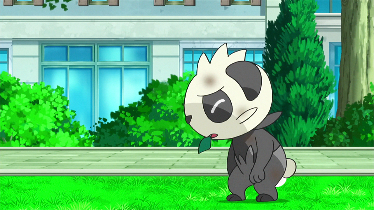 Pancham did not fight back after being attacked twice by the impostor Ash's Pikachu.
