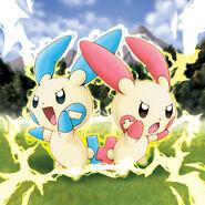 Plusle and Minun Pokemon Ranger