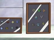 Reggie's Sinnoh and Johto Badges