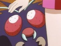 Venonat was wandering around the gym to get Ash, Misty and Brock to fall in the traps. It was used in the battle against Ash's Bulbasaur until Koga stopped the fight.