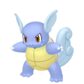 008Wartortle Pokémon HOME