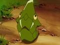 Ash Metapod