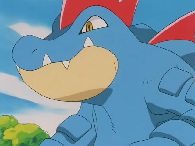 Raiden had a Feraligatr, whom he entered the contest with. It proved to be a versatile opponent, changing offense and defense at a quick pace.