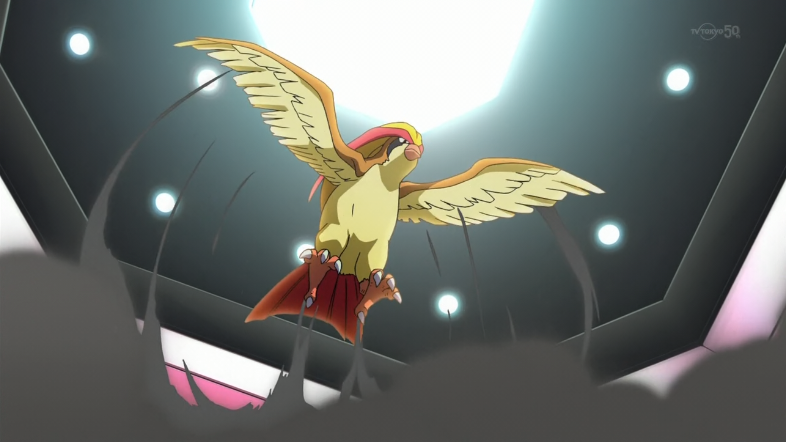 Blue's Pidgeot (Origins)