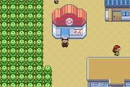 Dewford Town - Pokémon Center (Gen III)