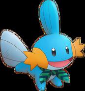 258Mudkip Pokémon Super Mystery Dungeon