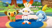 Pokemon Sword & Shield Sarters In Game