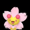 421Cherrim Sunshine Pokémon HOME