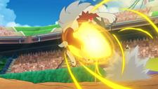 Kiawe Turtonator Focus Blast