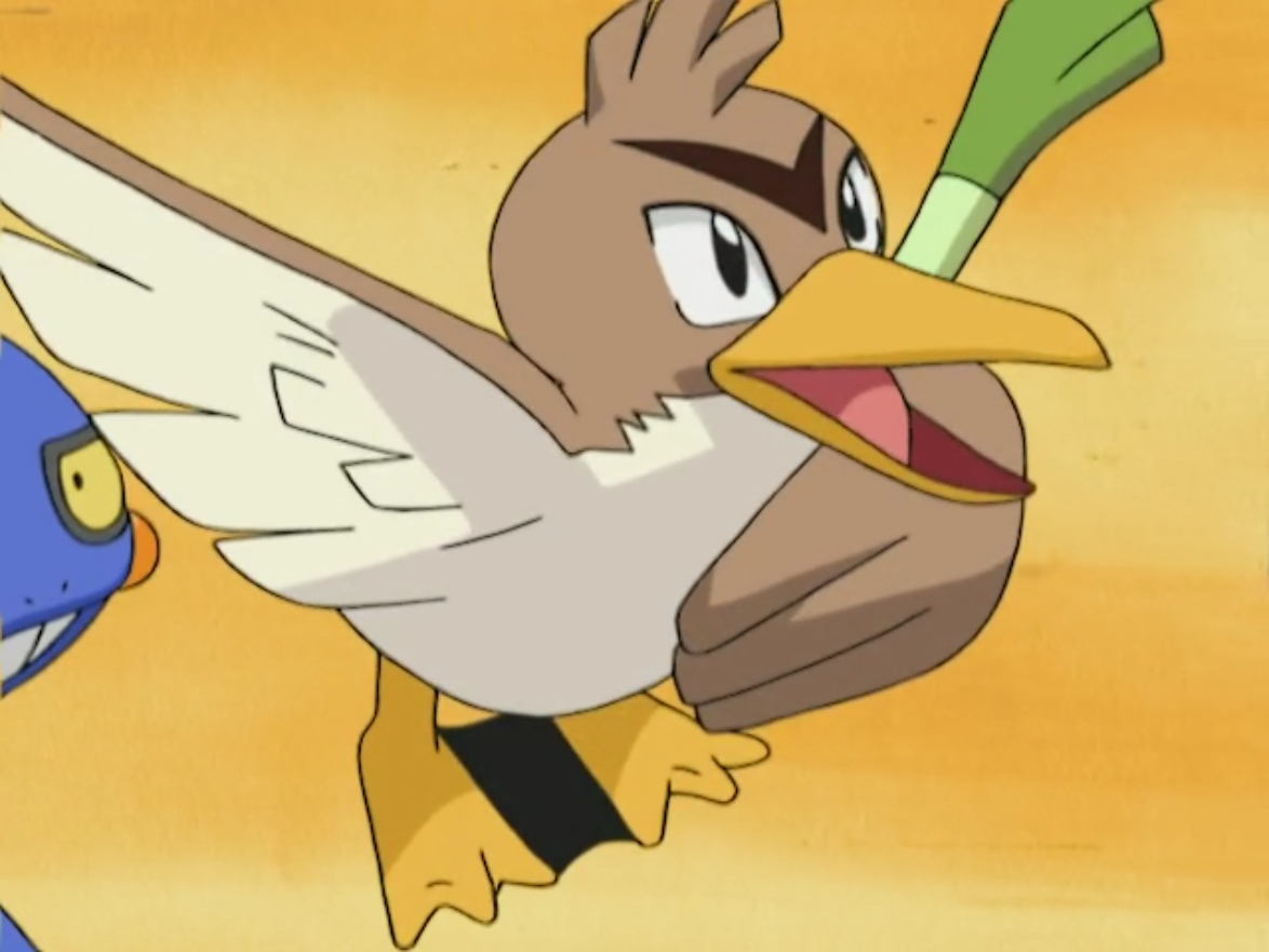 Holly's Farfetch'd