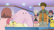 Brock and Chansey