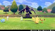 Pokémon Camp Pokémon