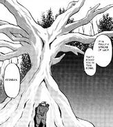 Xerneas Adventures Tree Form