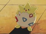 Princess Sara's Togepi