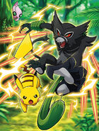 Tag Battle with Pikachu Zarude
