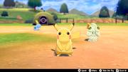 Pokémon Camp Pikachu