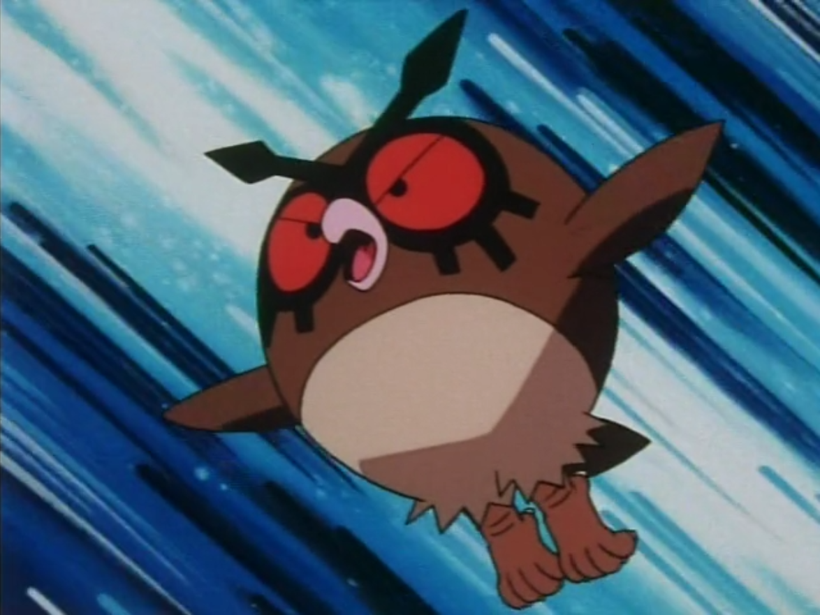 Hoothoot is Falkner's Pokémon that relies on pecking the opponents before finishing them.