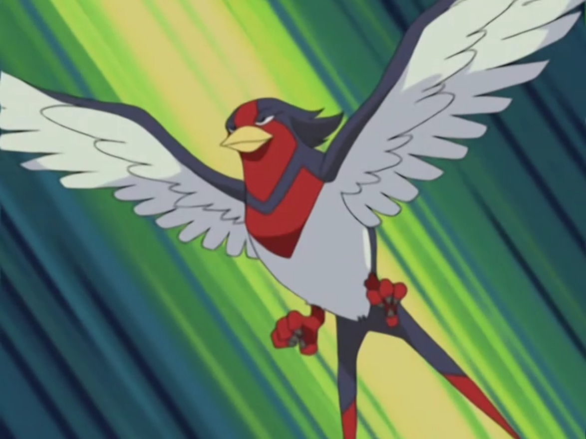 Vito sent Swellow to stop Team Rocket.