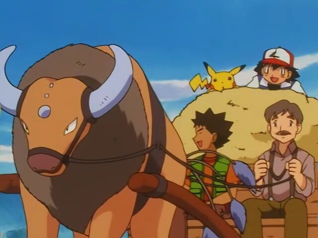 Mr. Shellby owns a Tauros, who helped him pull the wagon.