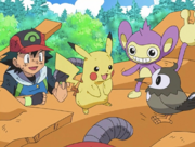 Ash, Pikachu, Aipom and Starly