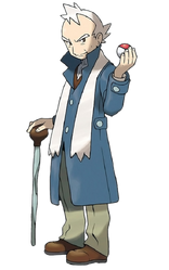 Pryce HeartGold and SoulSilver