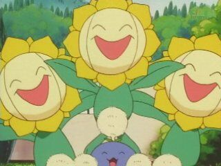 Tammy had a bunch of Sunflora as a part of her cheering squad.
