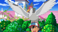 Ash and Tranquill