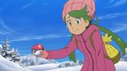Mallow snow wear
