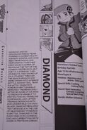 Volume 40 Diamond profile