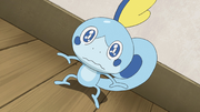 Goh Sobble Trapped