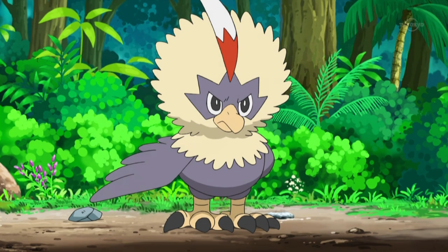 Rufflet, along with Vullaby, were the Pokémon Layla takes care about. However, due to their differences and disagreements, Vullaby and Rufflet often fought each other. Rufflet was more kind-hearted than Vullaby.
