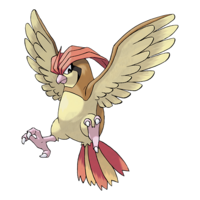 Pidgeotto.png