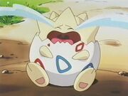 Togepi crying