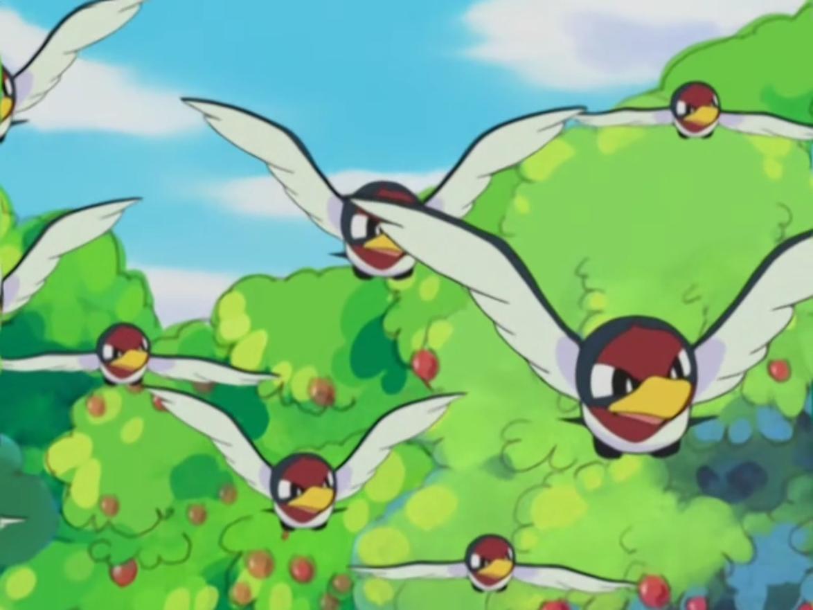 Taillow (anime) | Pokémon Wiki | Fandom