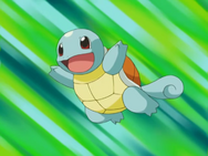 May Squirtle