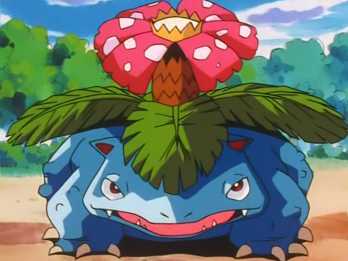 Venusaur is one of the Battle Park's Pokémon. James used it in battle against Ash's Cyndaquil and won.