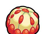 Liechi Berry