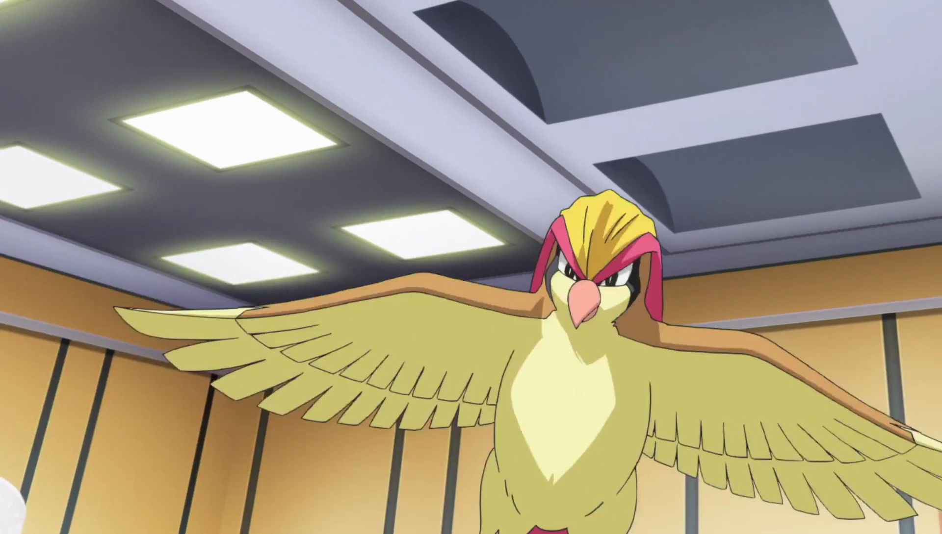 Blue's Pidgeot (Generations)