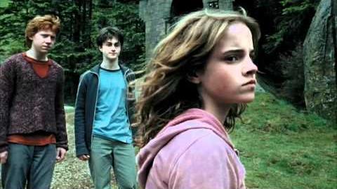 "Harry Potter and the Prisoner of Azkaban ""You foul, loathsome, evil, little cockroach!"""
